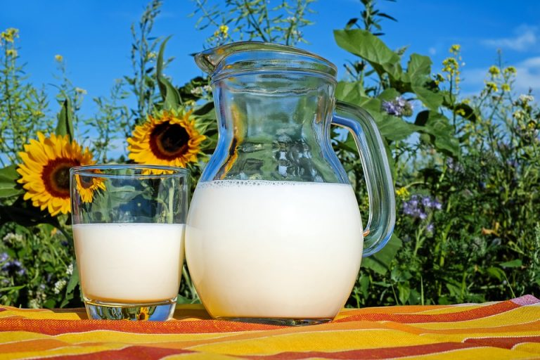6 Foods to Fight a Vitamin B12 Deficiency: Milk