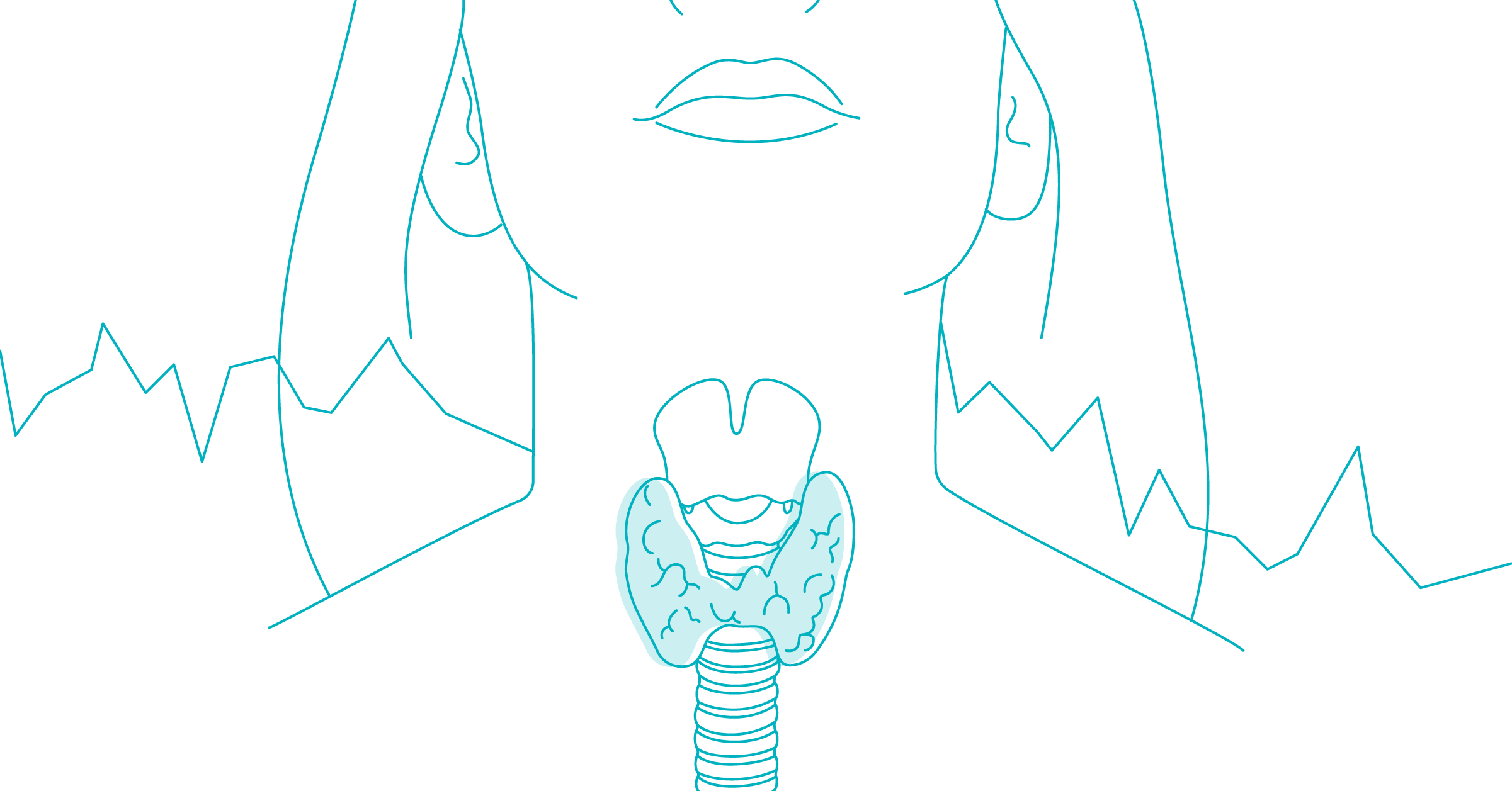Thyroid Gland Illustration