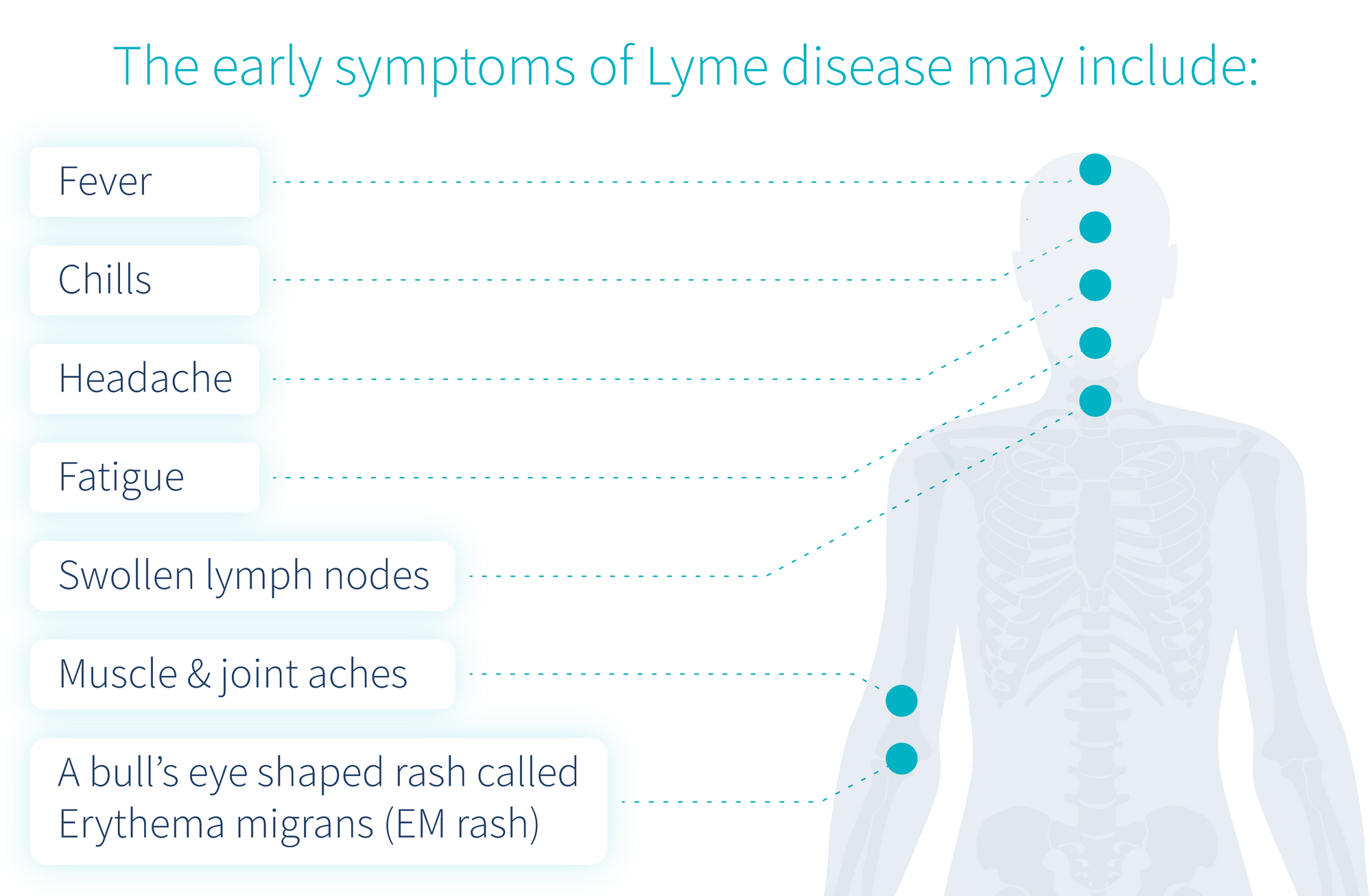 signs-and-symptoms-of-lyme-disease