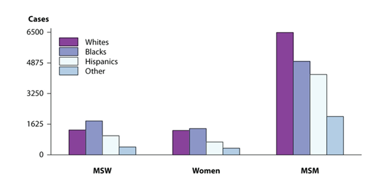 Diagram-showing-the-number-of-syphilis-cases-in-different-racial-and-sexuality-groups