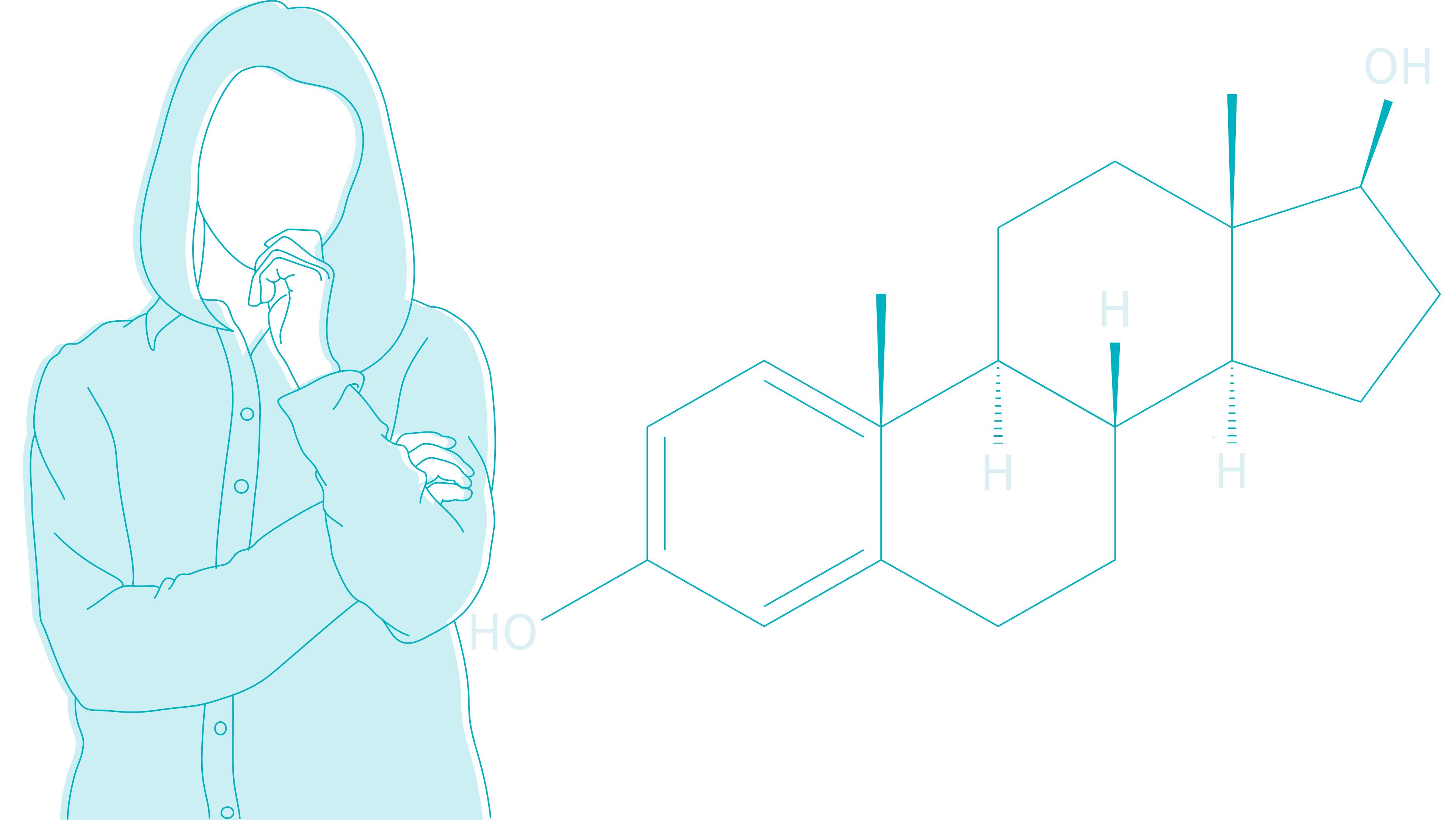estrogen molecule